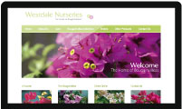 Website design for Westdale Nurseries